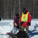 2016 Dog Sled Race Has Been Canceled