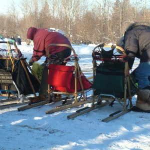 dog sledding equipment, sled dog race, deer river mn