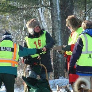 dog sled race, mike squier, judge