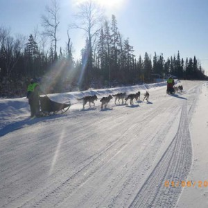 white oak dog sled race, donna jankowski, julie schmelzer