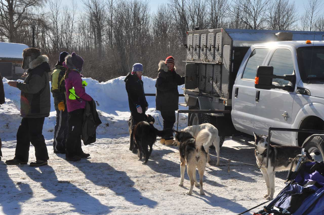 white oak dog sled race, white oak classic
