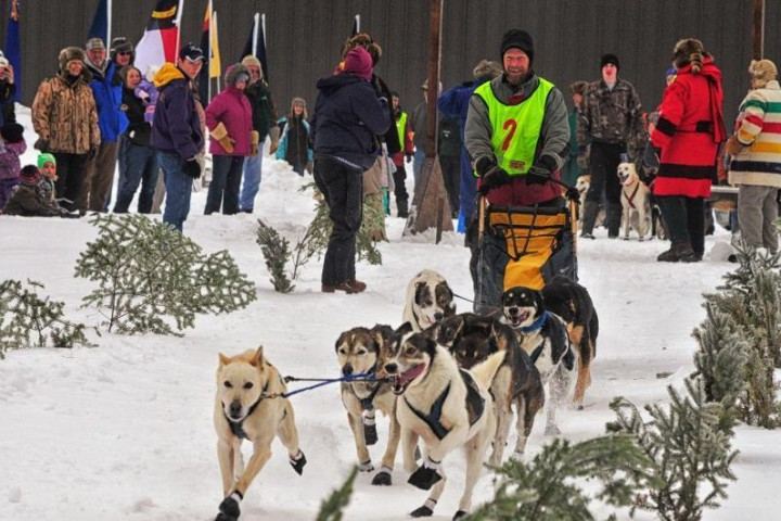 musher, sled dog race